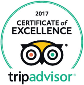 Willie Nelson and Friends Museum - Winner of the 2016 tripadvisor Certificate of Excellence award!