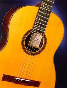A special edition Martin guitar replica Trigger.